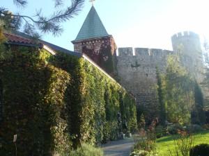 У подрожия крепости Калемегдан, Белград, Сербия